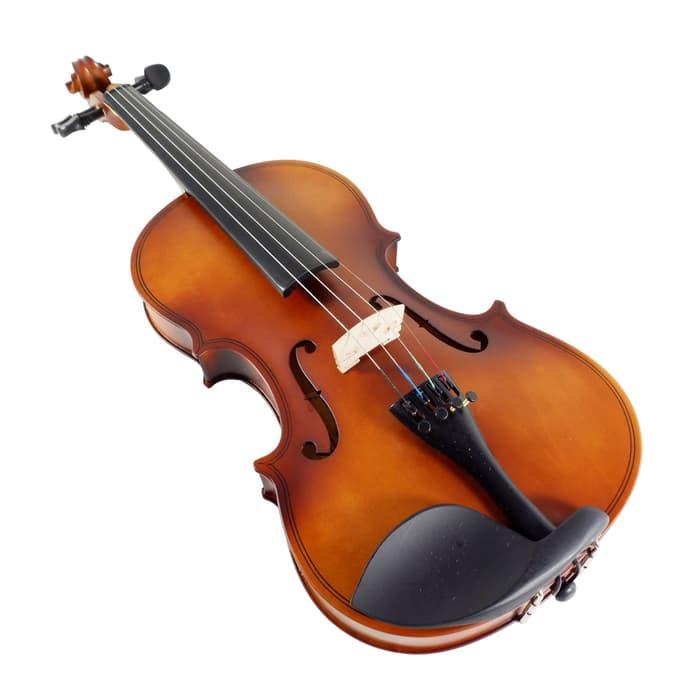alat musik gesek-1