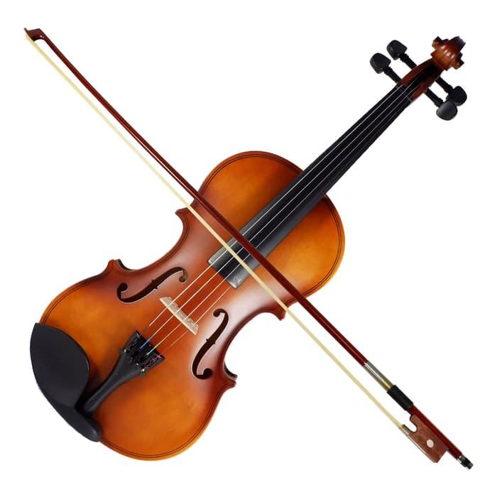 alat musik gesek-2